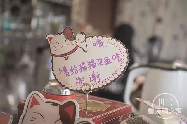 深圳超治愈的猫咪咖啡厅!萌出血-23.jpg