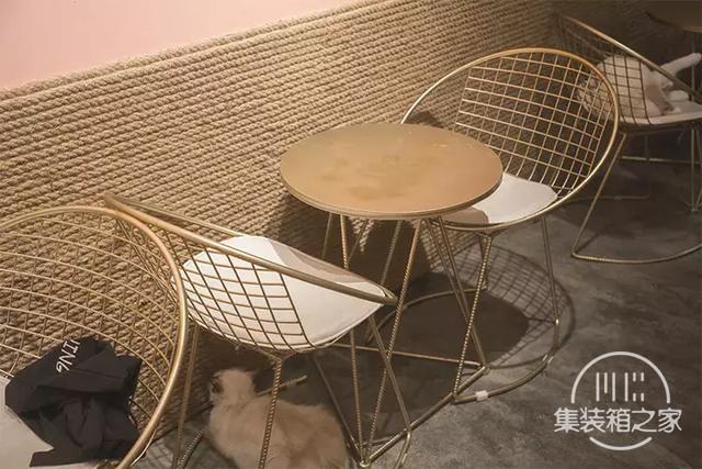深圳超治愈的猫咪咖啡厅!萌出血-55.jpg