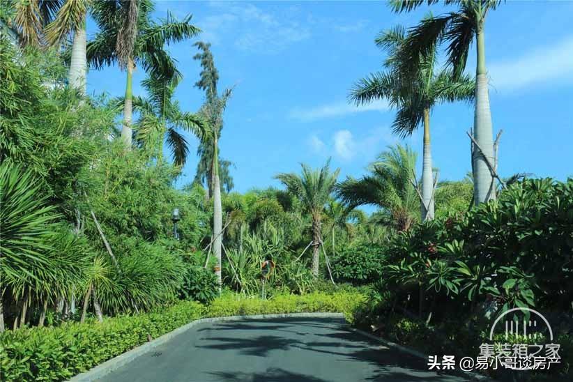 海南三亚海棠湾项目,亚特兰蒂斯实景图、效果图、样板间-5.jpg