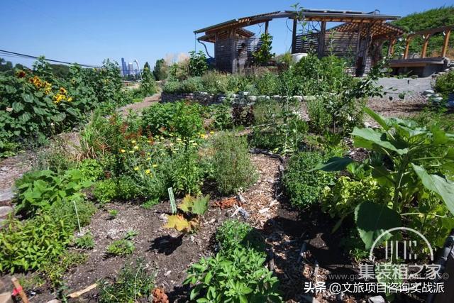 看这些创意都市农场是如何实现城市与农业完美融合的-4.jpg