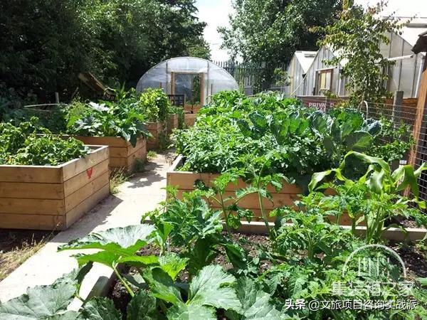 看这些创意都市农场是如何实现城市与农业完美融合的-11.jpg