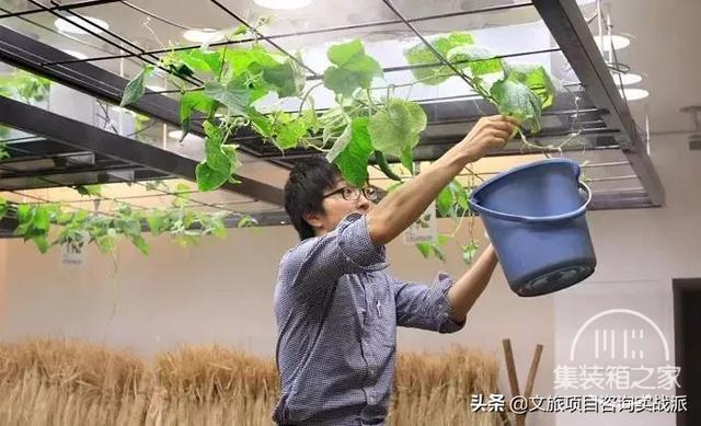 看这些创意都市农场是如何实现城市与农业完美融合的-27.jpg