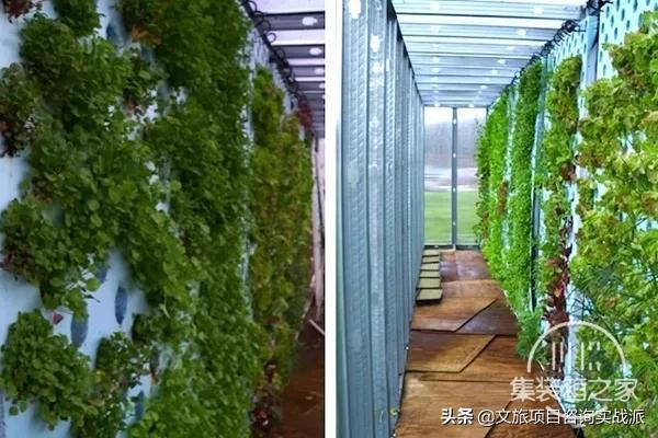 看这些创意都市农场是如何实现城市与农业完美融合的-35.jpg